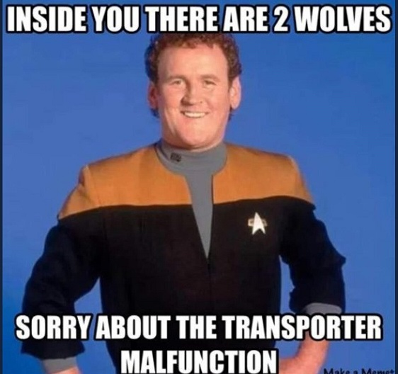 "Photo of Miles O'Brien from Star Trek Next Next Generation, with Caption: ""Inside you there are two wolves. Sorry about the transporter malfunction."""